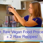 Best Raw Vegan Food Processor + Raw Recipes: Brownies and Zucchini Rolls